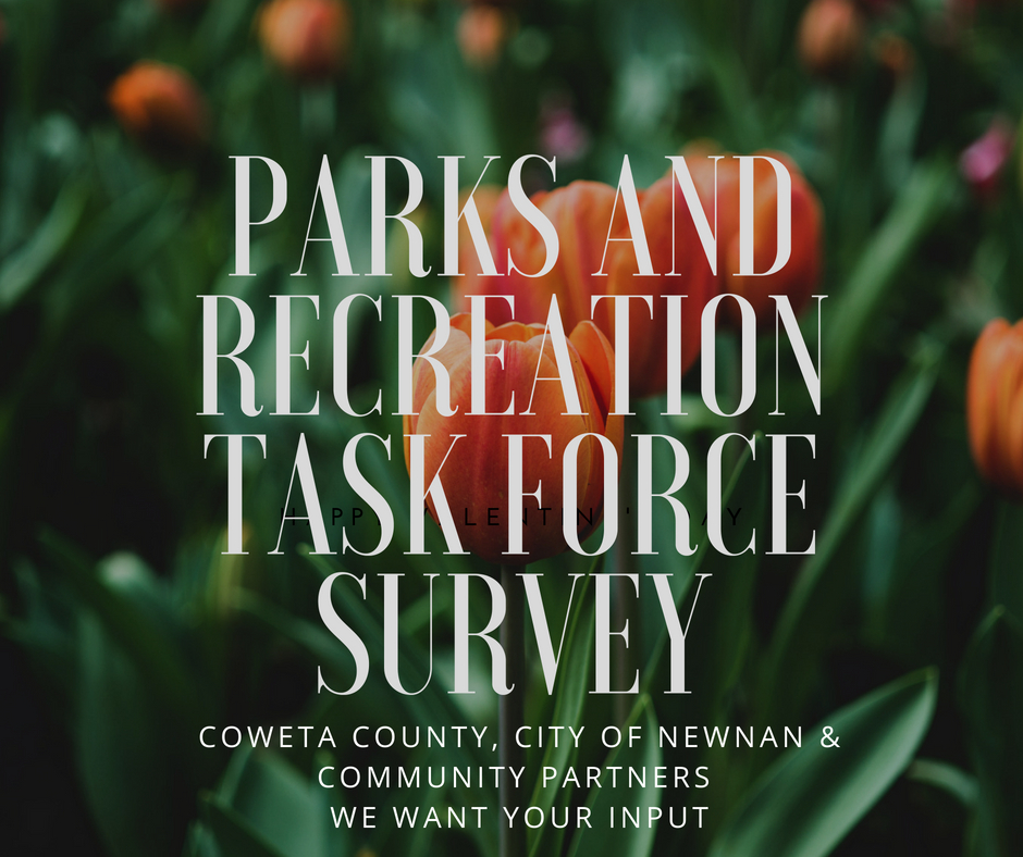 parks and recreation task force survey